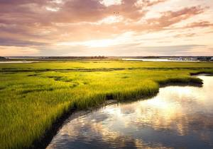 New Jersey Resources – Sustainability