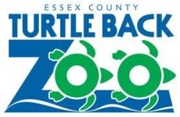 d7606257a63213faf89f_turtle_back_zoo.jpg