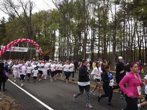 Susan G. Komen 7th Annual Race for the Cure Draws Thousands, photo 7