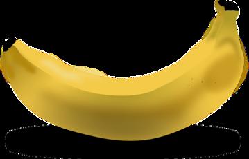Top_story_18e4b10f43259bfbe864_banana-151553_640