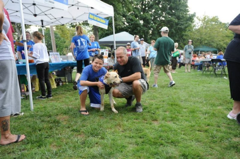 Home For Dogs Summit Nj