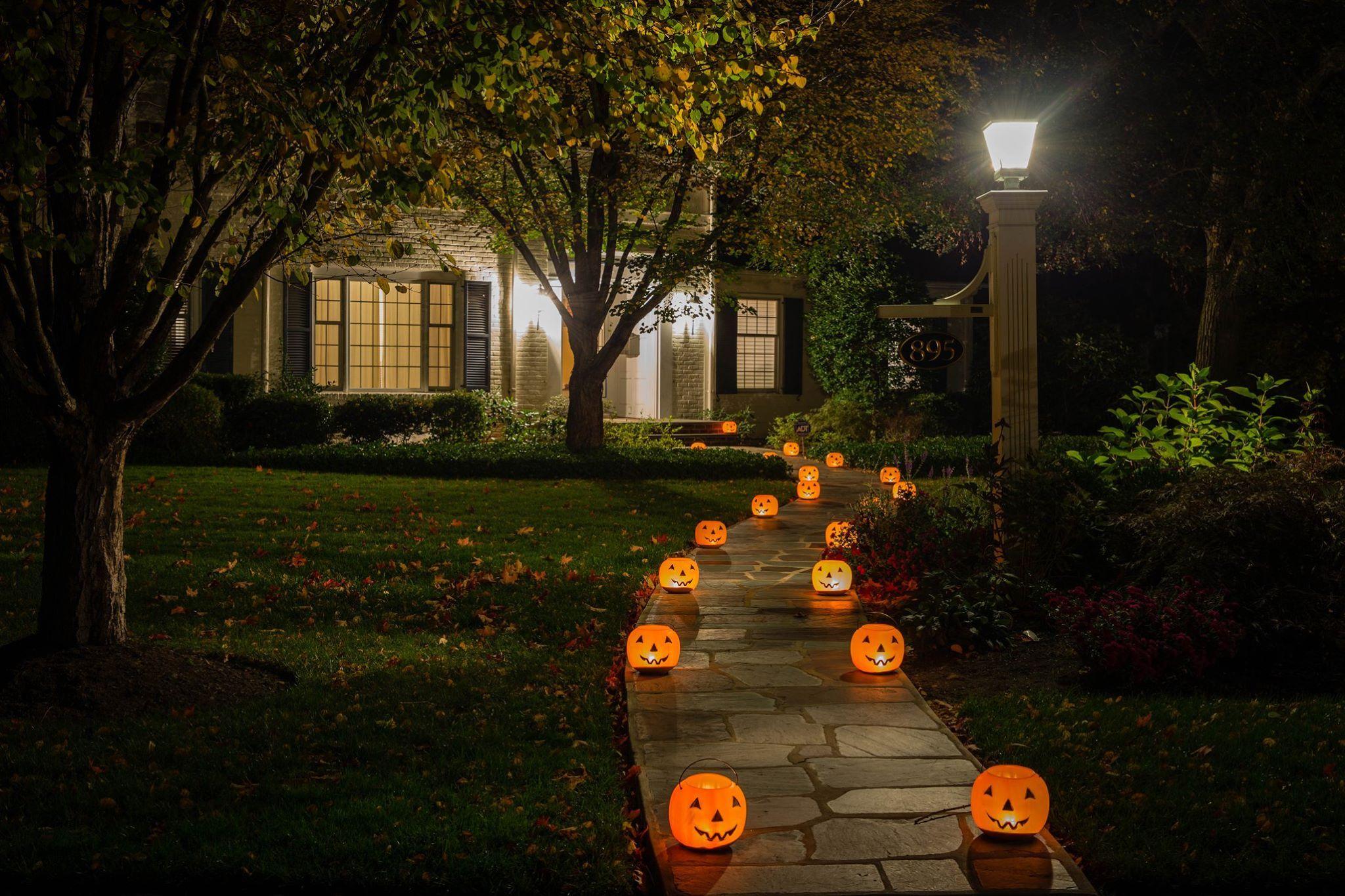 71ed19151a131fa34f00_Halloween.jpg