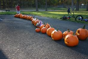 "Pearly Whites ""Brought Smiles"" To Pumpkin Carving Event, photo 17"