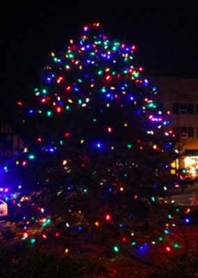 South Orange Tree Lighting and Holiday Open House Saturday, photo 2