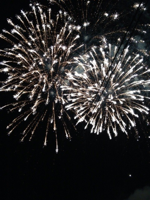 fb4db971635085a53058_firework6.jpg