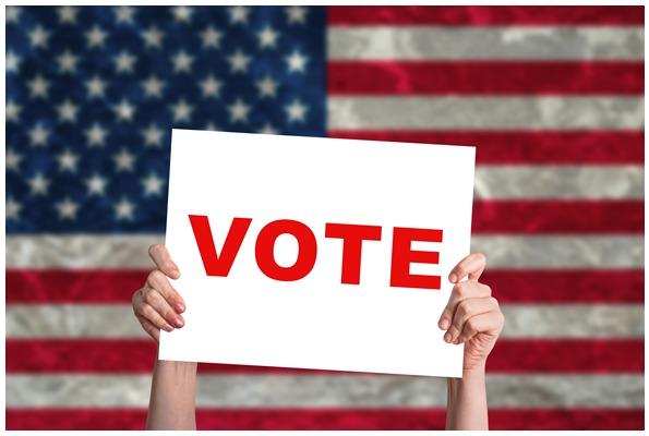 177b0c9d93e4449b846f_vote.PNG