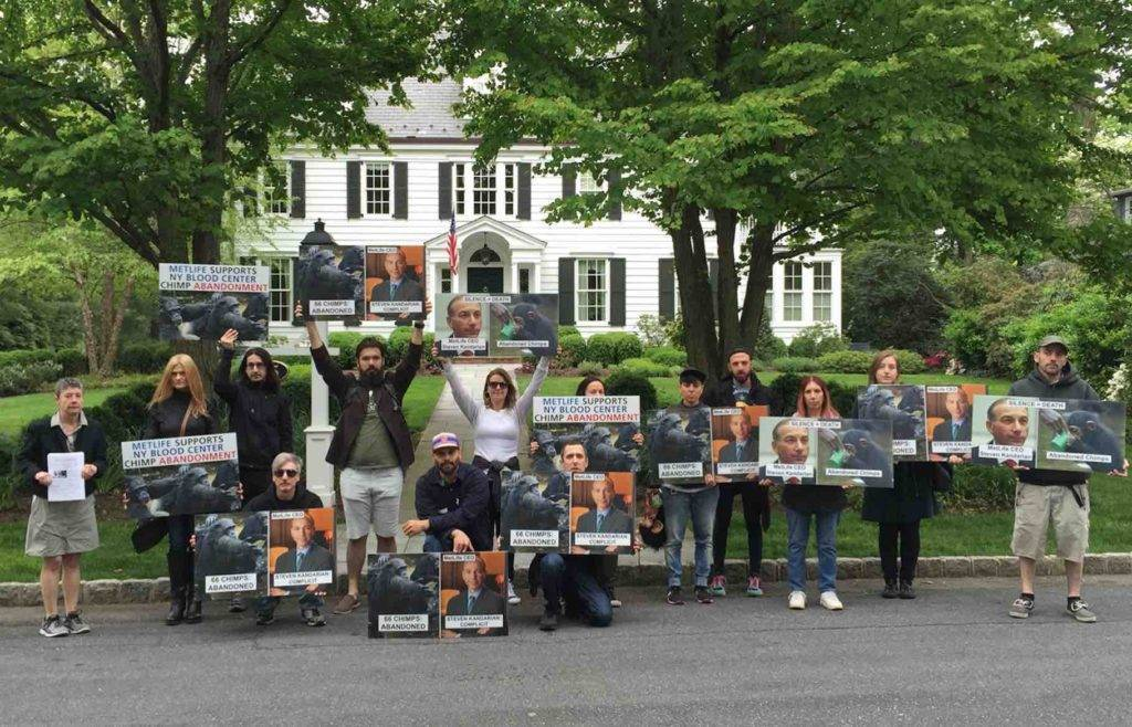 Animal Rights Activists Set to Stage Second Protest in Summit July 10