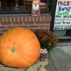 Small_thumb_6073d603531ecb406cdf_nicks_pizza_-_pumpkin