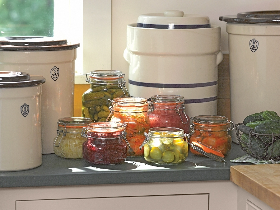 0e40d3daa83445554f08_fermentation_kit.jpg
