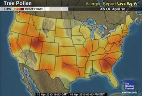 Tree Pollen Very High This Week