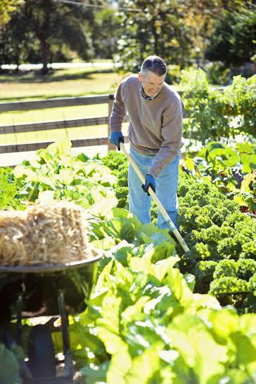 b89e60a904015d3fc963_gardening.jpg