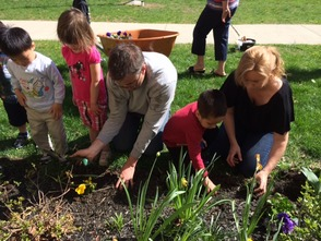 Parent volunteer help Mrs. Brennan's students learn how to plant
