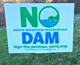 No Dam for South Mountain Reservation, photo 1