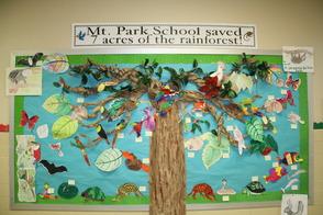 Mountain Park Students Raise $700 For The Rainforest Trust, photo 1