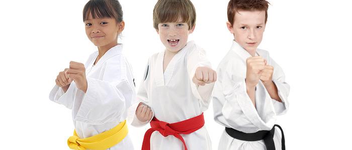 1db532e2f2aeef21910a_karate.jpg