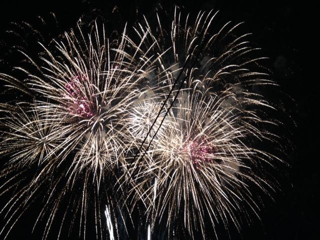 c987ee7343dc8a27d035_firework8.jpg