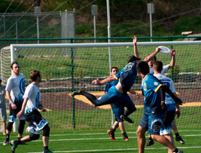 NJ Hammerheads Bring Professional Ultimate Frisbee Back Home, photo 2