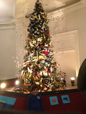 Last Year's Tree at the American Museum of Natural History