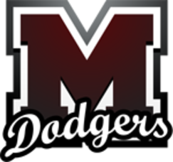 Madison Baseball Varsity Splits First Two Games, photo 1