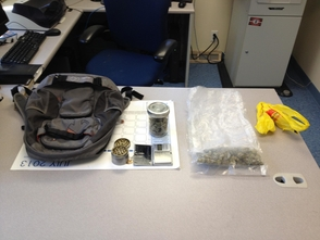 Mendham Township Police Make Noteworthy Arrest for Drugs, photo 1