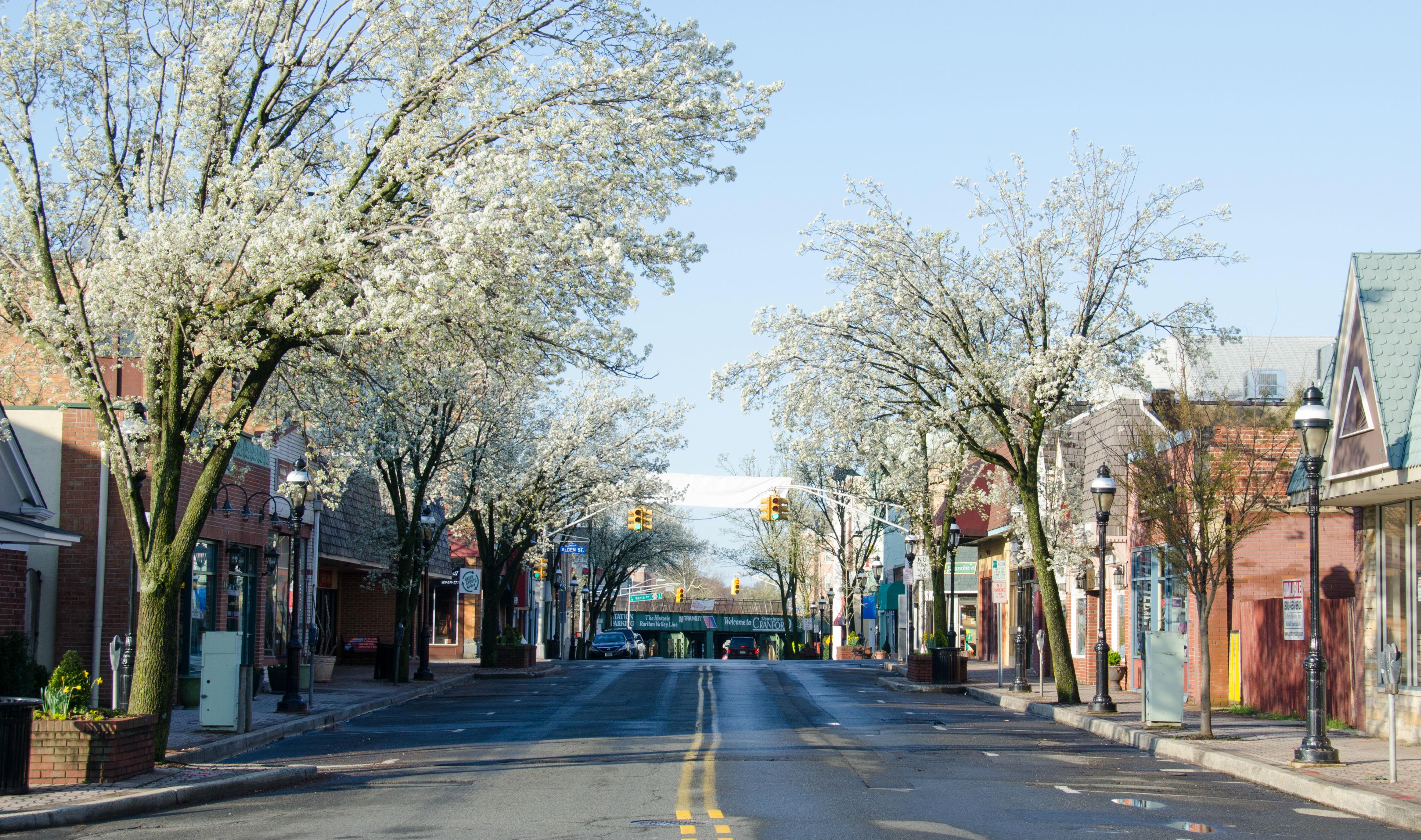 d16b73b3a404db1dc512_spring_downtown.jpg