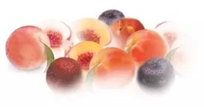 Summer Fruit Supplied to Many Local Retailers Recalled Due to Potential Health Risk, photo 1
