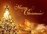 Thumb_302e9d02f8dcf5f0e926_merry-christmas-photos
