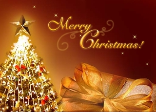 Top_story_302e9d02f8dcf5f0e926_merry-christmas-photos