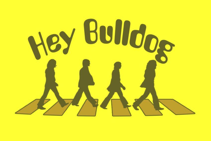 d83cd33211f48532f203_hey_bulldog_logo.JPG