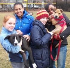 Montclair Animal Shelter