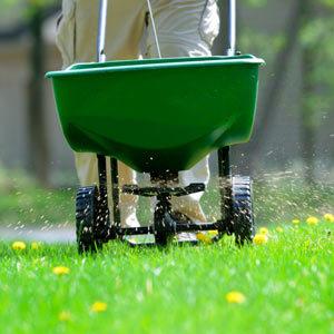 d9dfb31fad92b9ae1ba3_fertilizer.jpg