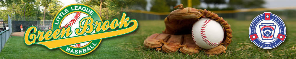 e41b1014999ac3f54725_little_league_banner.jpg