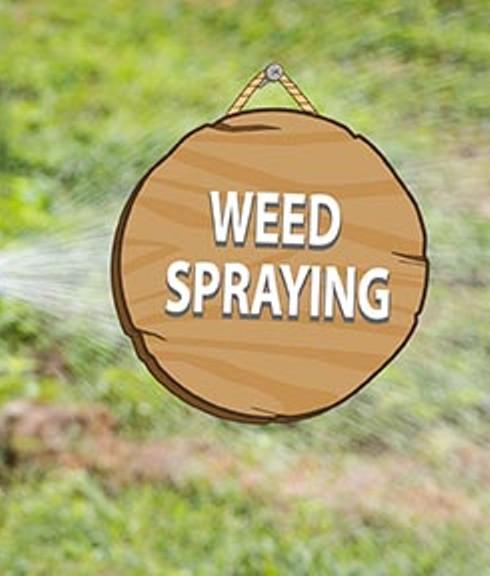 ea1f6f248f292f6f5471_e5abbfe0112fb6496286_weed_spraying.jpg