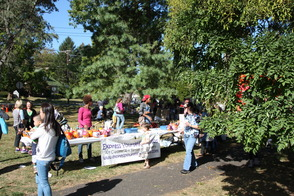 Maplewood HarvestFest Draws a Crowd for Fun on Springfield Avenue, photo 6