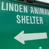 Small_thumb_3096de31738fb4b34ec2_linden_animal_shelter
