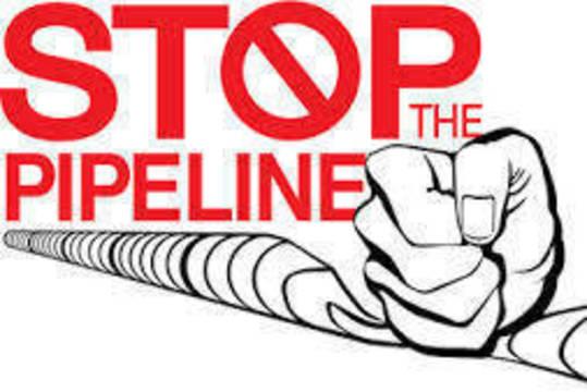 Top_story_33bcd9c532122e74a767_a19d1027c6de31644626_no-pipeline