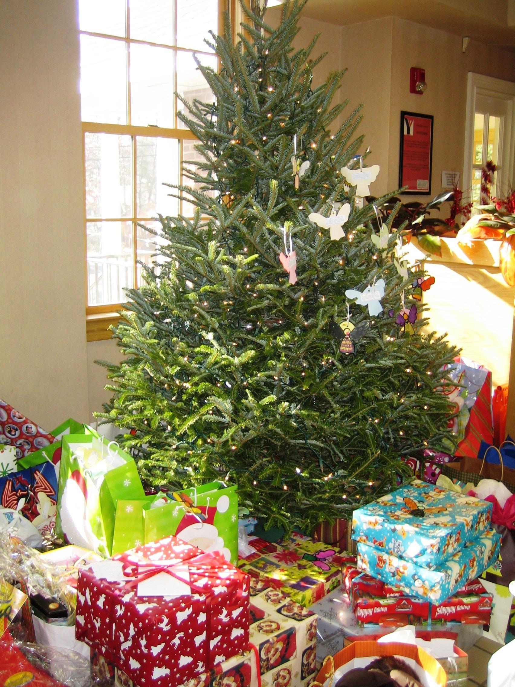 424753b20904663b6fbb_ANGEL_TREE_PHOTO_for_JAN_2011_Release.jpg