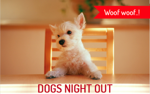 It's 'Dogs Night Out' This Sunday at Cafe Monet, photo 1