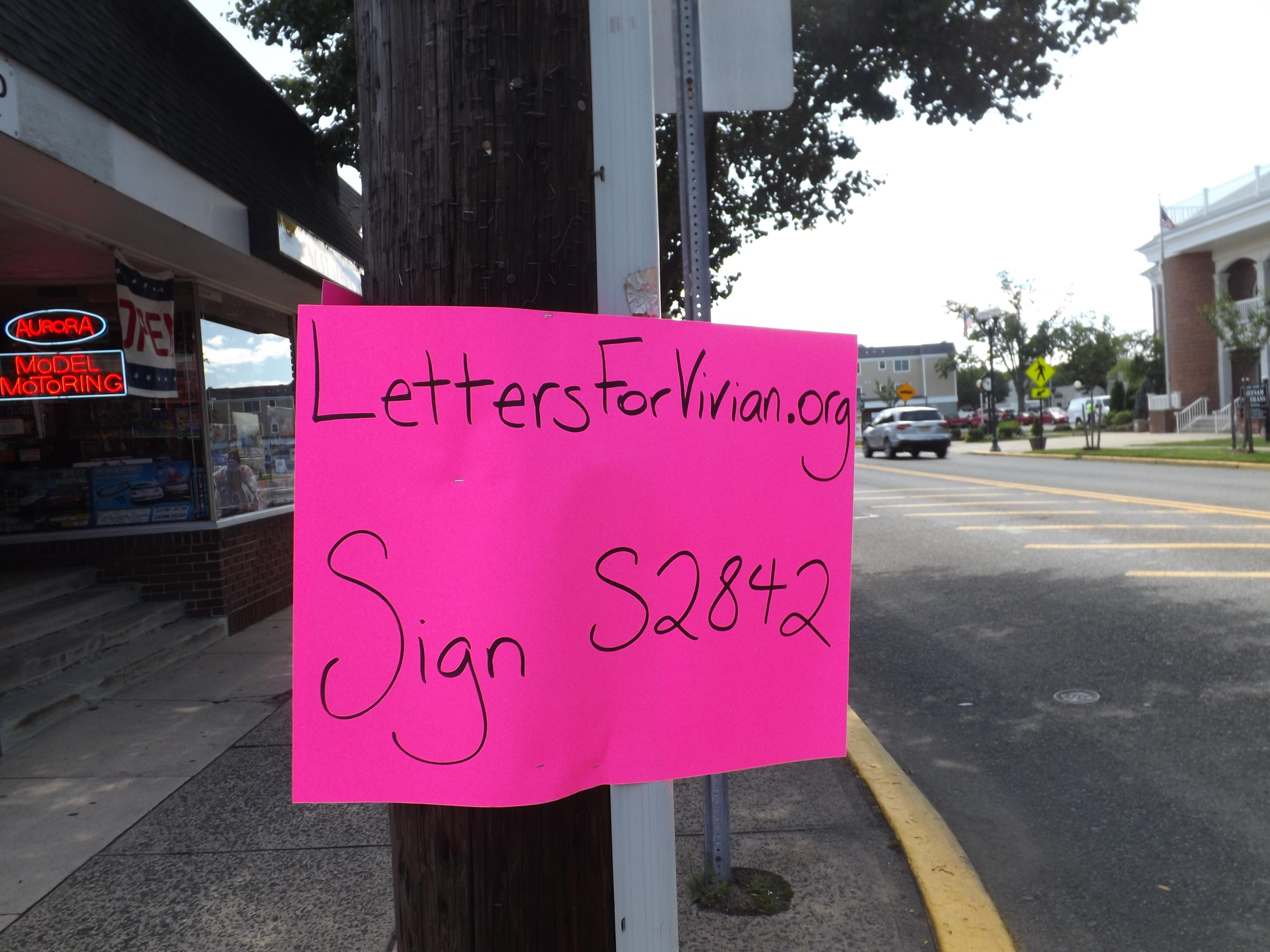 2225057d649579e03cf1_pink_signs_for_vivian.jpg