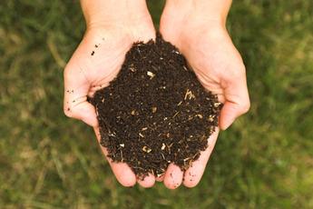 Top_story_e64e6b352f267eaf4eab_hands_holding_dirt