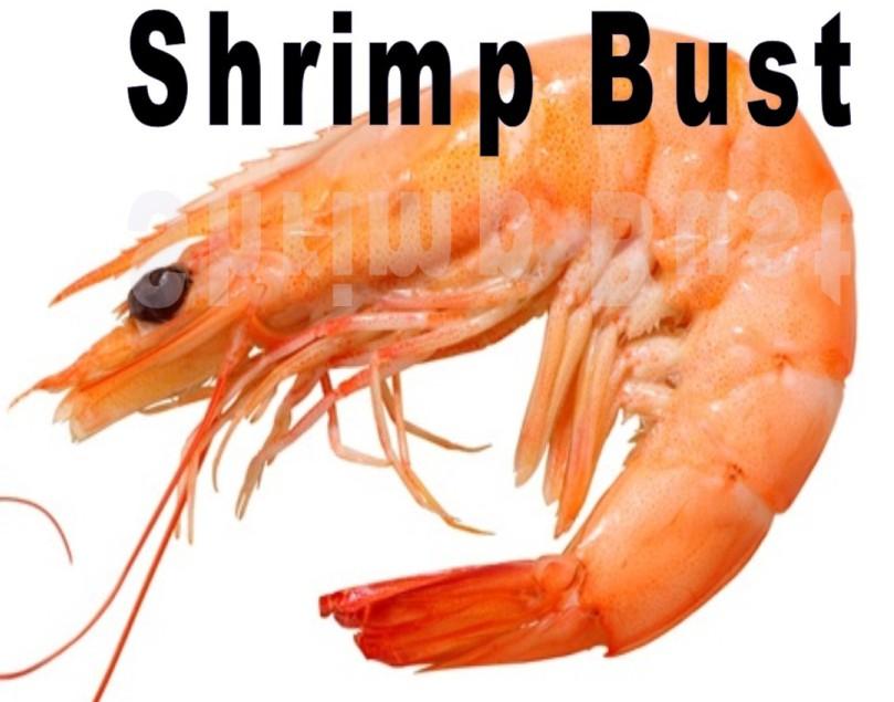d9a79036bc5e1b48c7ac_aee829a6e5a049573ce5_shrimp.jpg