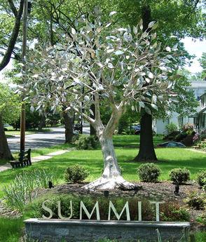 Summit C.A.T.