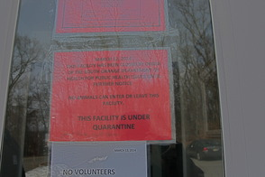 South Orange Health Department Closes Jersey Animal Coalition Shelter, photo 2