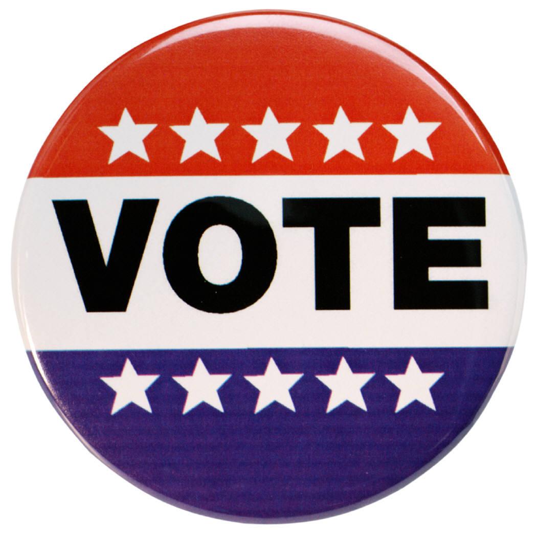 a62fbdbc573b5850de9a_Vote.jpg