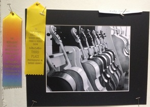 Kelly Carolan's photograph won Third place in the Student Category