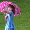 Small_thumb_707643a87a39a14b1673_phoebe_umbrella