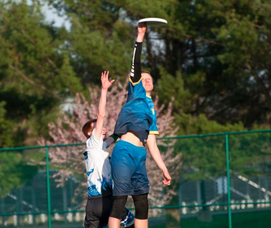 NJ Hammerheads Bring Professional Ultimate Frisbee Back Home, photo 3