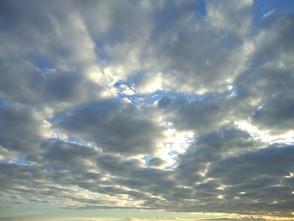 Sunday, June 30, West Essex Weather, photo 1