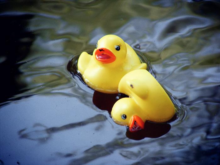 9b38ec442497cb9d4875_Rubber_Ducky_Race.jpg