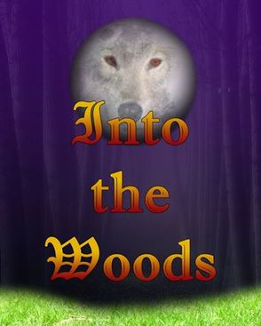 Cast Announced for 'Into the Woods', photo 1
